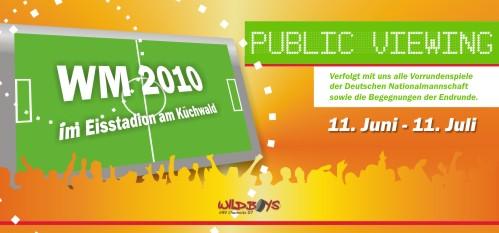 public_viewing_vorn_netz.jpg